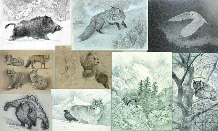 Nick Edel animali delle valli di Lanzo