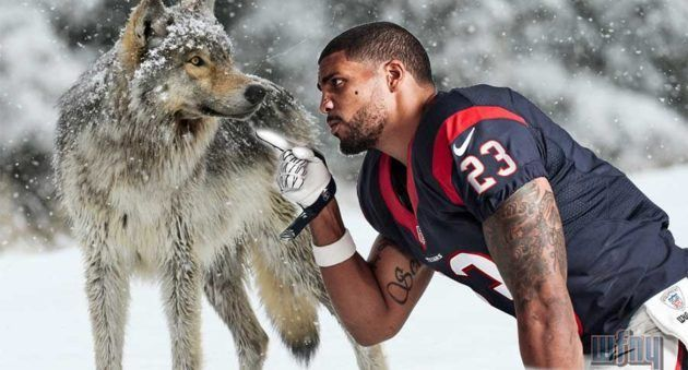 NFL Running Back Arian Foster Thinks He Can Take a Wolf 1 on 1?
