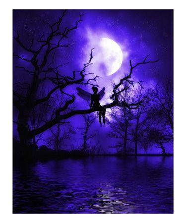 Celestial Night by Julie Fain (Giclee Print)