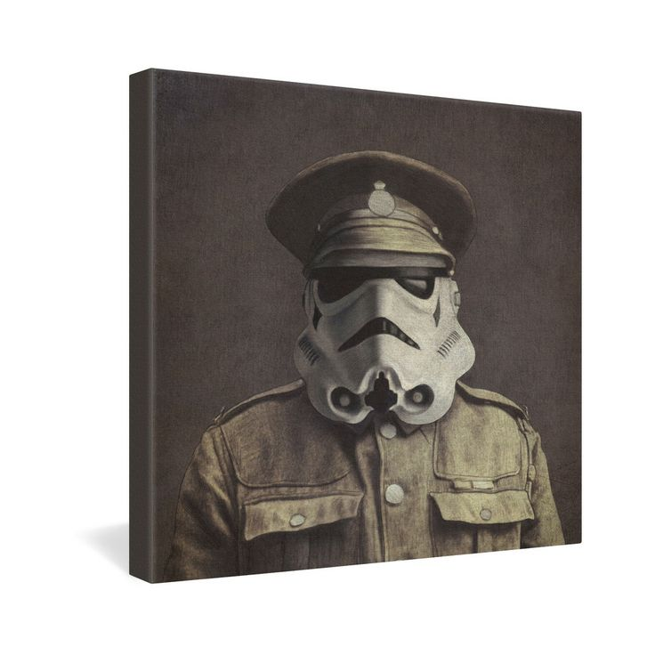 Terry Fan Seargent Trooper Gallery Wrapped Canvas | DENY Designs Home Accessories