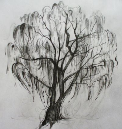 Weeping Willow Tree Black And White Tattoo 25+ best Willow tree t...