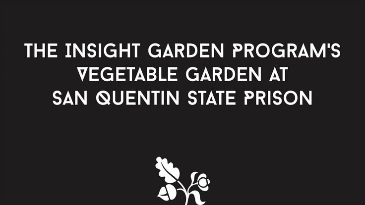 The Insight Garden Program's Vegetable Garden at San Quentin State Prison. The Planting Justice team worked with Beth Waitkus and the Insigh...