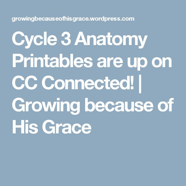 Cycle 3 Anatomy Printables are up on CC Connected! | Growing because of His Grace