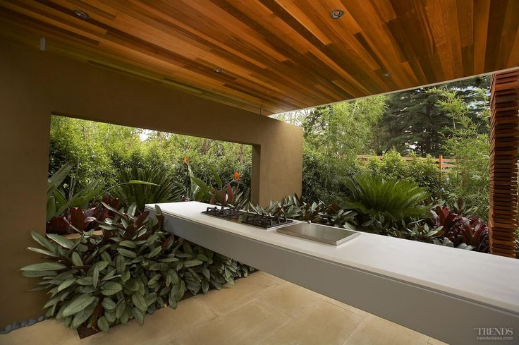 The bench is cantilevered over the garden, which features large-leafed Alternanthera plants.