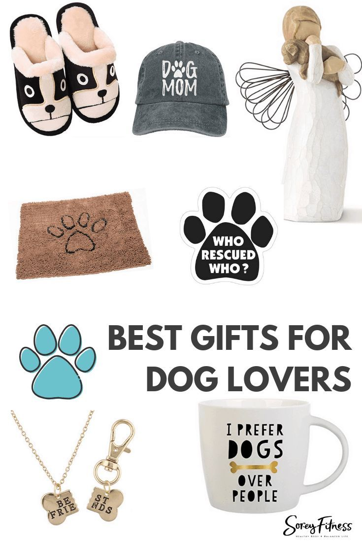 Gifts For Dog Lovers On Amazon