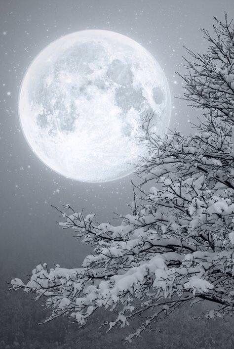 Full Moon in Winter ~