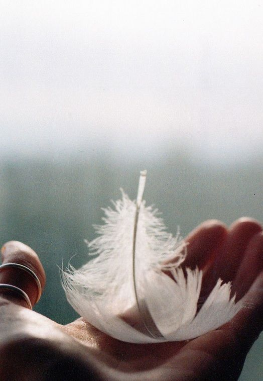 white feather... Need an Angel right now x