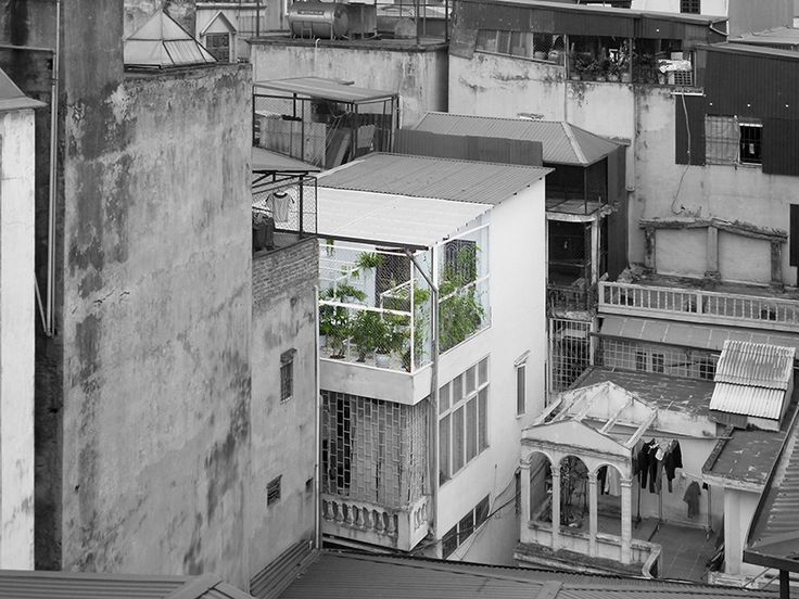 pavilion of the origins hung nguyen vietnam designboom