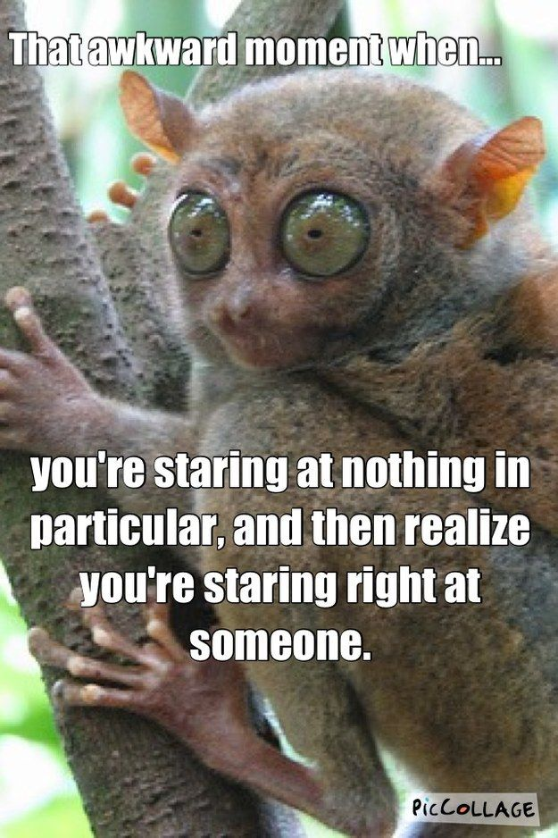 That Awkward Moment When…I do this ALL the time.  I'm sure I have creeped some ppl out...heh...sorry