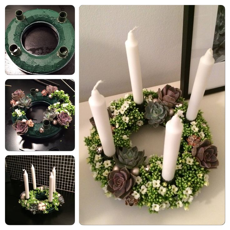 Advent decoration with Queen kalanchoe flowers