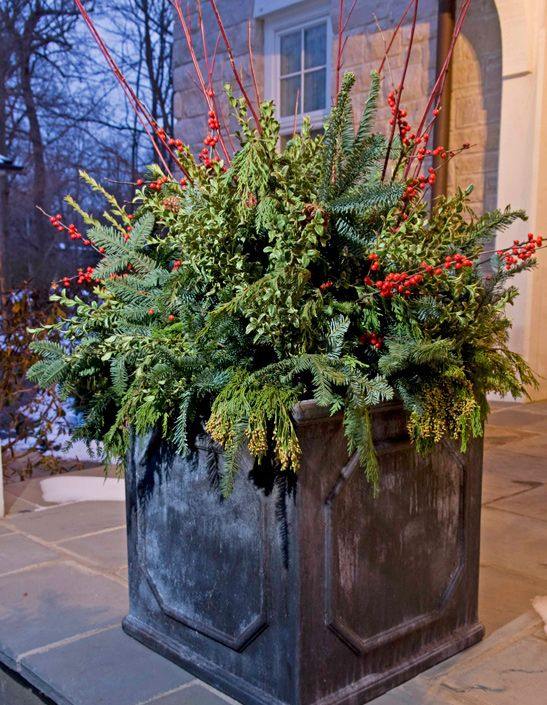 Decorating Ideas > 17 Best Images About Design Resource Traditional Home  ~ 101404_Christmas Decorating Ideas For Outdoor Pots