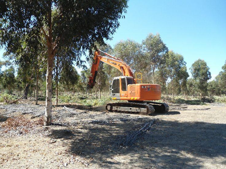 Tree care heavy equipment