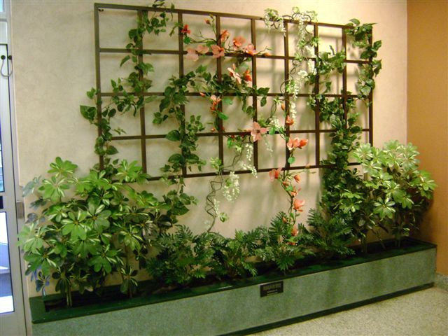 The 25 best wall trellis ideas on pinterest trellis for Wall trellis ideas