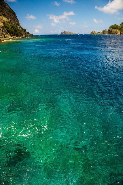 Aqua Color - Ogasawara Islands, Tokyo, Japan HeadsCarolina