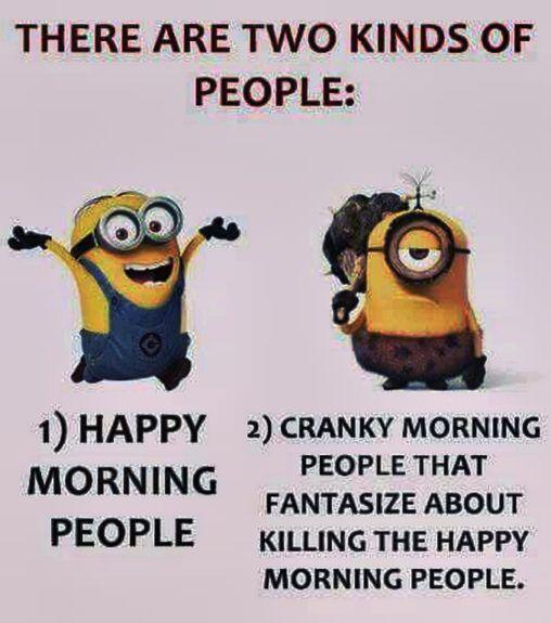 Today funny Minions photos 090706 03