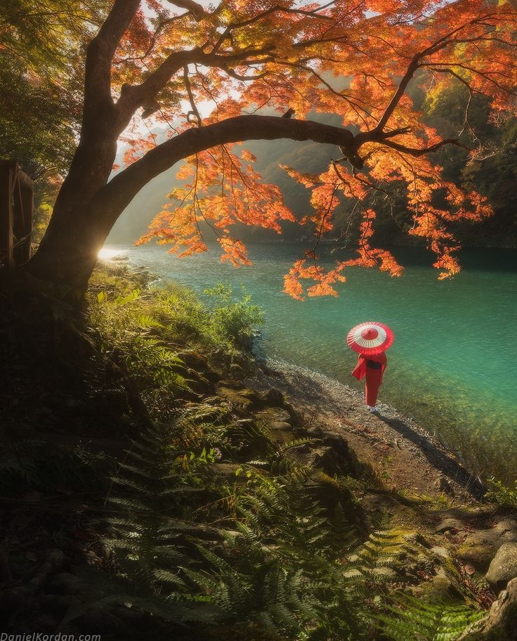 Lady in red - Japan is awesome in autumn. I've just landed in New Zealand and try to recall all impressions after the week in colorful dream... Danielkordan.com