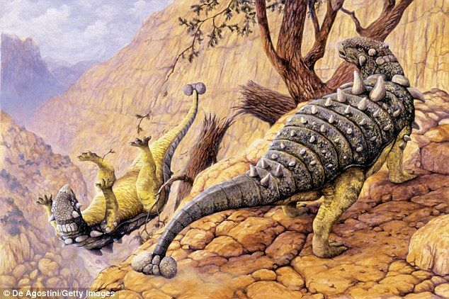 The nasal cavities of Pawpawsaurus resemble that of Panoplosaurus and Euoplocephalus (arti...
