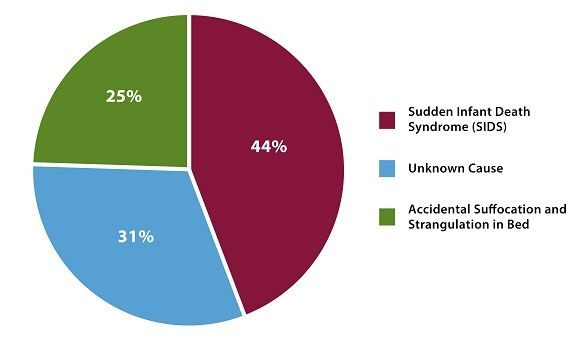 The sad thing is, almost all of these were a product of vaccination.  The breakdown of sudden unexpected infant deaths by cause in 2014 is as follows: 44% of cases were categorized as sudden infant death syndrome, followed by unknown cause (31%), and accidental suffocation and strangulation in bed (25%).