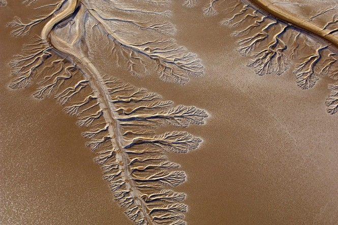 Пустыня Сонора, Мексика Аэросъемка высохшего русла реки в пустыне Сонора на территории Мексики. Будто гигантское дерево поглотили пески, оставив на поверхности только его очертание.