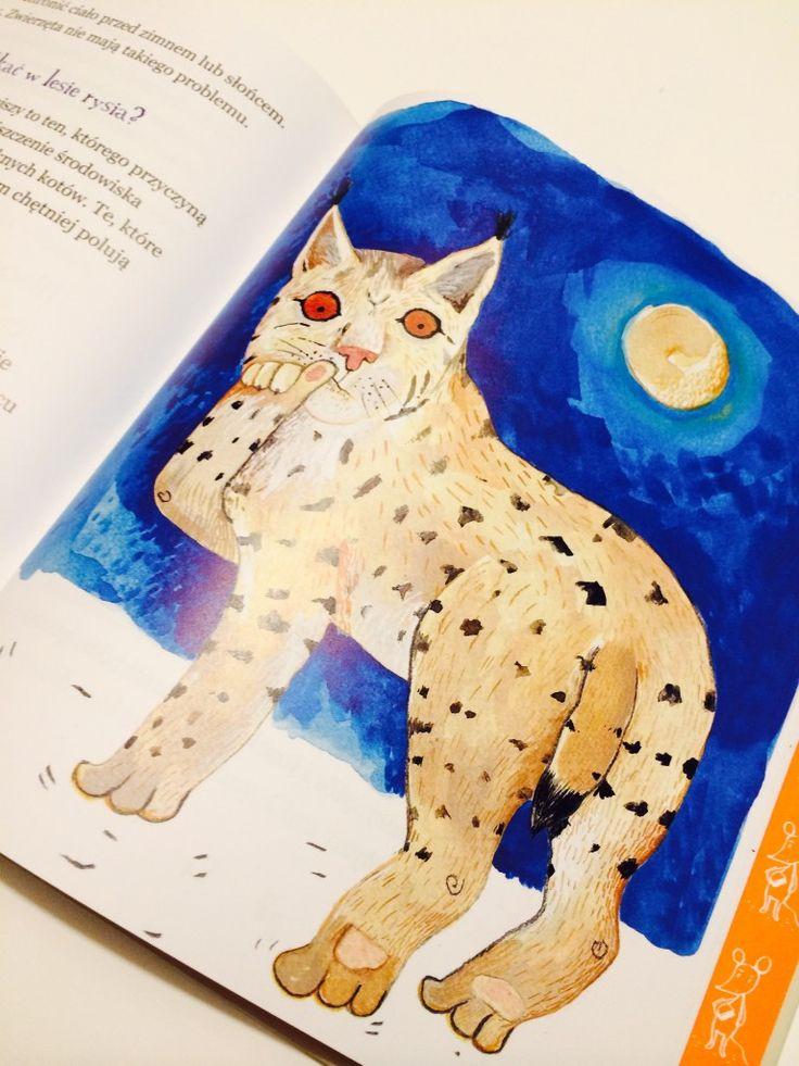 Dlaczego oczy kota świecą w nocy?