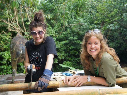 Volunteers working hard at our zoo internship in Malaysia http://www.oysterworldwide.com/gap-year/zoo-assistant-internship-in-malaysia/