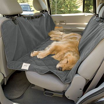 If you're going to travel with your dog, something like this is a great investment. My mother got me this for Christmas. Although it doesn't deter JP from hopping into the front seat, it does keep my car seats cleaner! It's especially useful after a dirty filthy dog park romp.