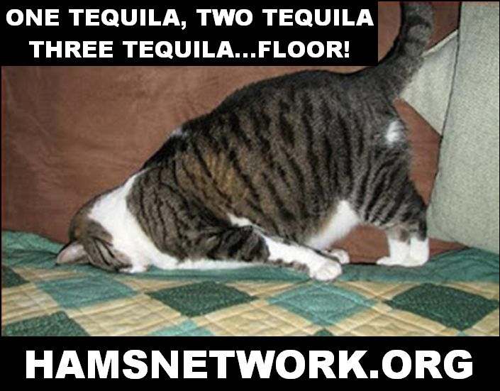 25 best images about harm reduction on pinterest for 1 tequila 2 tequila 3 tequila floor lyrics