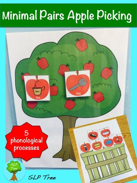 Who needs an apple orchard when you have your speech therapy room and these minimal pair apples? Give your students the experience of apple picking this fall while working on auditory discrimination of minimal pairs and/or reduction of phonological processes.