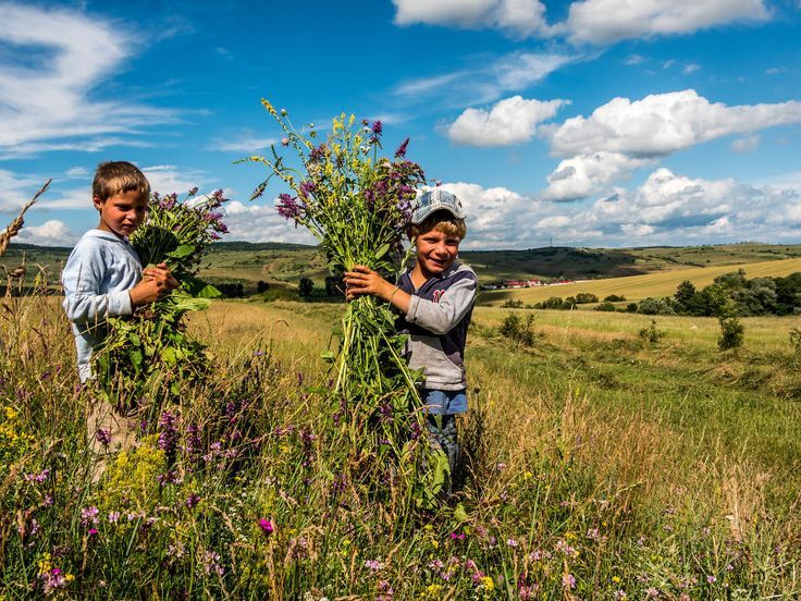 14 Aspects Of Rural Life In Romania That Will Fascinate You