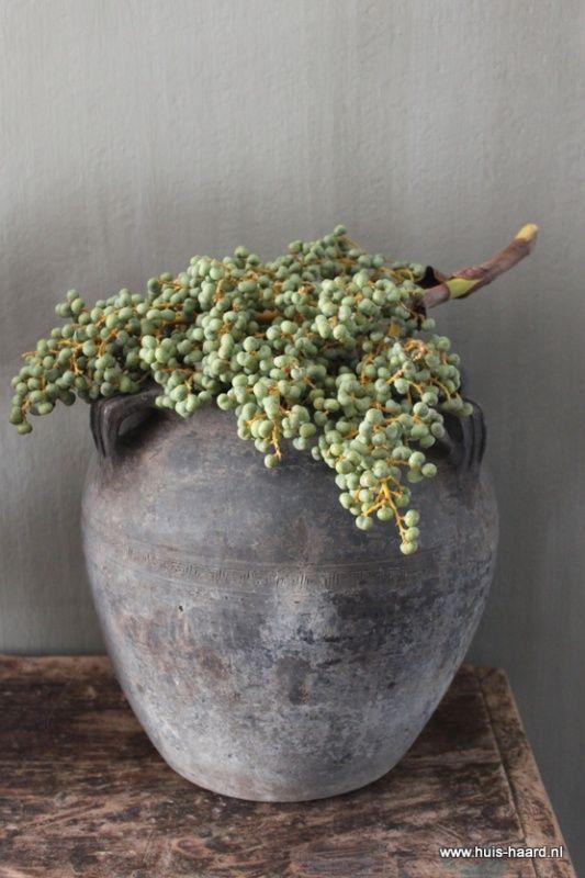 Dadeltak (gedroogd mooie paarstint) op 'ruwe' pot (Sfeer van accessoires)