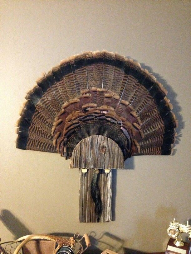 Barn wood turkey mount