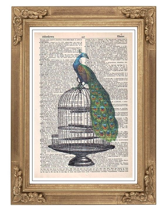 I find as I get older, I am drawn to things my late grandmother liked - peacocks, owls, keys, doors, vintage items.
