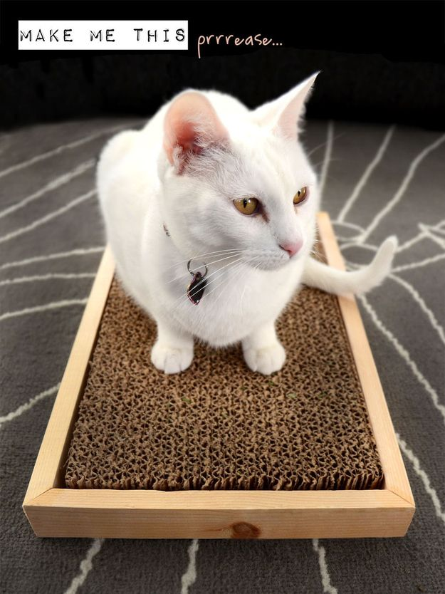 And this scratcher will give your cat's nails a workout. | 26 DIYs Your Pet Will Totally Appreciate