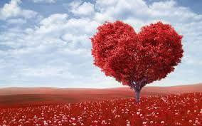 Love tree love spells http://lovespellscasting.com/love-spells-tree.html