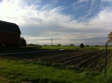 Saving Michigan's Farmlands: What's At Stake and How Michigan Benefits | MLCV-Michigan League of Conservation Voters