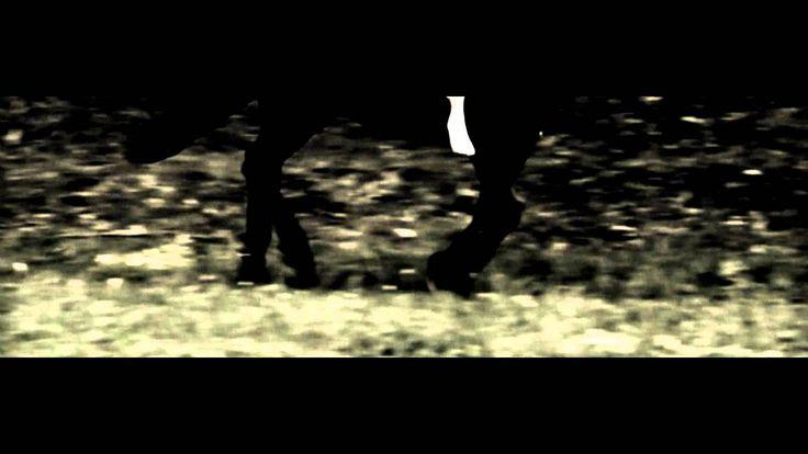 Holdviola - Vágta (2011)