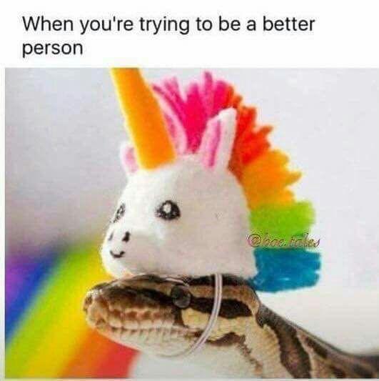 Quando você tenta ser uma pessoa melhor.
