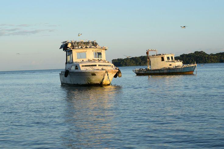 Pesqueros, Bahia de Amatique, Livingston Izabal, Guatemala.
