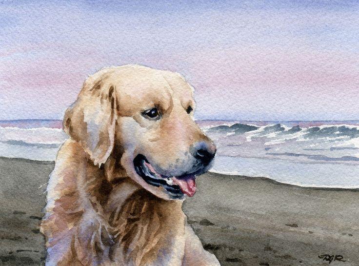 GOLDEN RETRIEVER At The Beach Dog Art Print Signed by Artist D J Rogers. via Etsy.