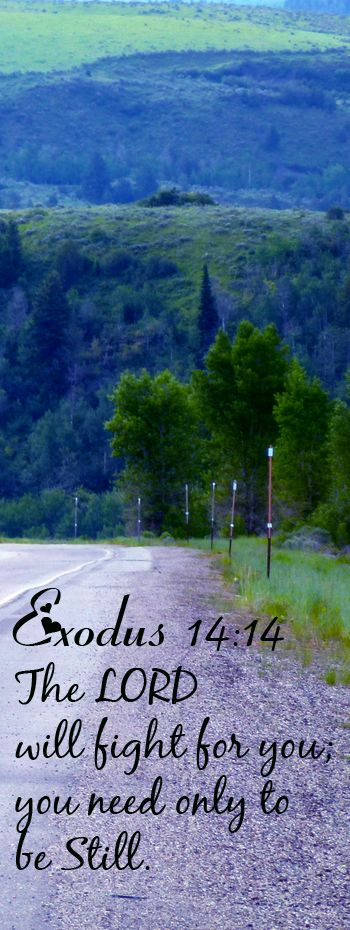 Bible Verse ♥♥♥ EXODUS 14:14 The LORD will fight for you; you need only to be still.♥♥♥