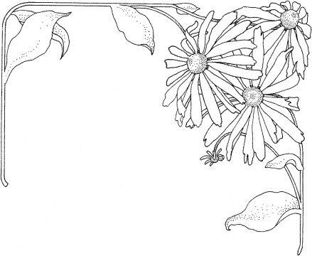 Best 25 September birth flower