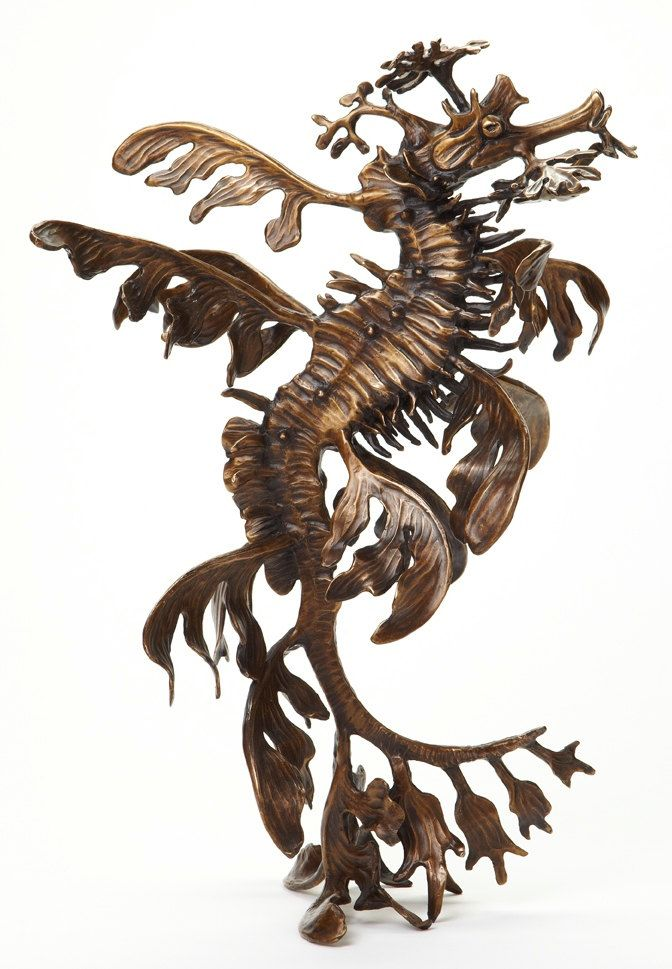 Bronze leafy sea dragon sculpture by Kirk McGuire