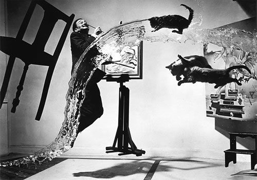 Dali Atomicus, is perhaps Halsman's most famous one. In 1940s Halsman had begun to collaborate with a surrealist painter named Salvador Dali. This photograph was named after Dali and one of his paintings called Leda Atomica. The painting was still not finished at the time of taking the photo and is visible behind cats on right hand side. The entire effect in the photo was achieved by suspending objects like chair and painting, throwing bucketful of water and cats in air, and a jumping Dali. Y...Photos, Cat, Philippehalsman, Salvadordali, Philippe Halsman, Art, Salvador Dali, New York City, Photography