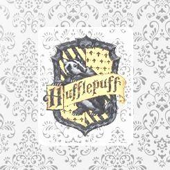 1000 Ideas About Harry Potter Decor On Pinterest Harry