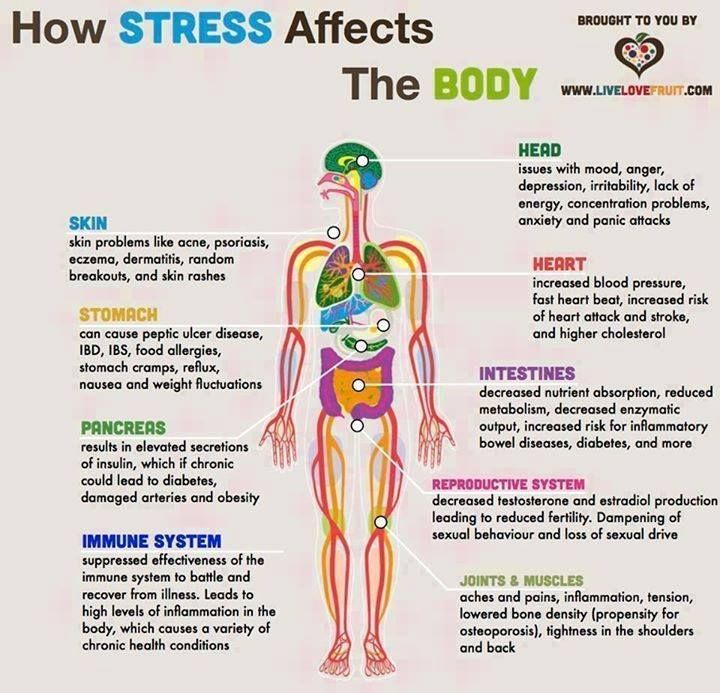 Physical Teams Give Us Problems: How Stress Affects The Body!