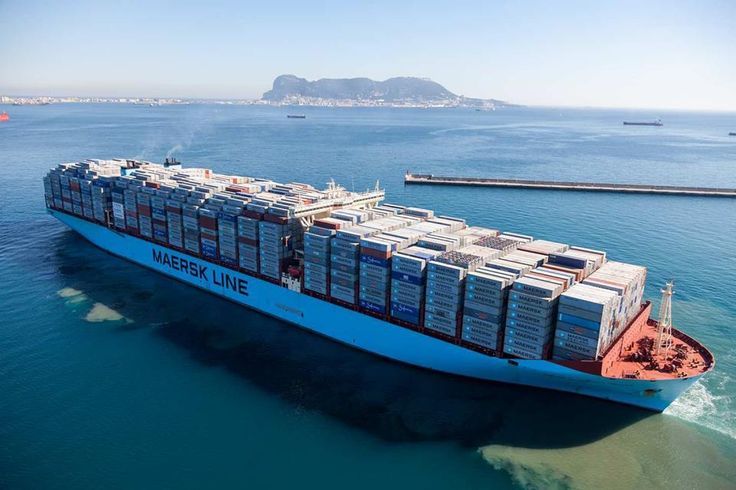 A.P. Moller-Maersk's progress in cutting costs reassured investors on Friday after the Danish shipping and oil giant reported a sharp decline in quarterly profit and its new chief executive confirmed that earnings would fall this