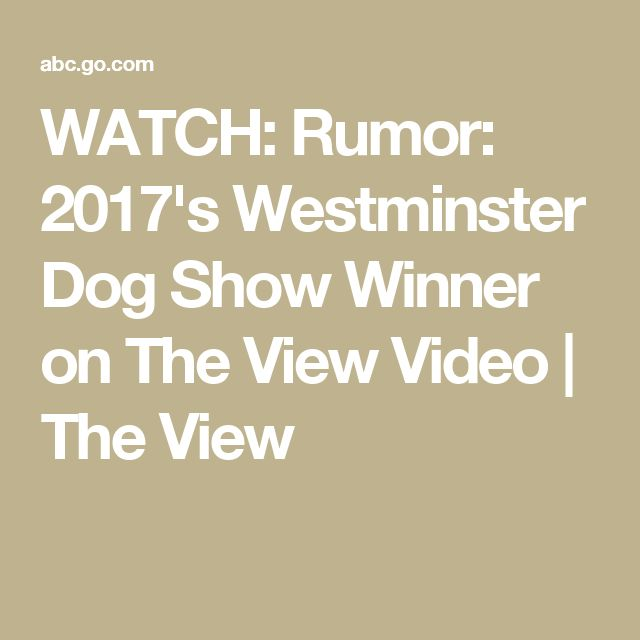 WATCH: Rumor: 2017's Westminster Dog Show Winner on The View Video   The View