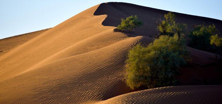 Dormir dans le désert du Sahara est un must lors d'un voyage au Maroc. Voici mes conseils pour une expérience qui répond aux attentes de tous les voyageurs!