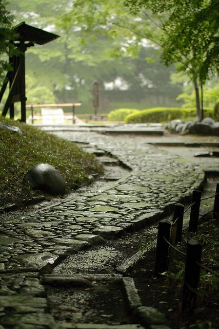 Koishikawa Park in Tokyo, Japan