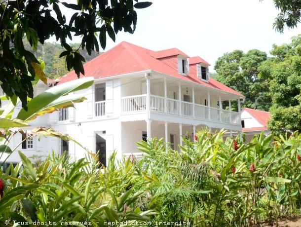 Habitation Loiseau Grand-Rivière Vieux-Habitant Guadeloupe maison